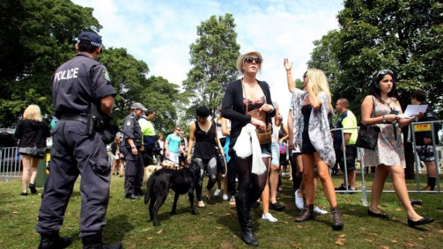 sniffer_dogs_festivals